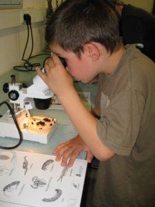 comment utiliser un microscope enfant
