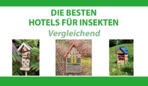 vergleichend hotels insekten
