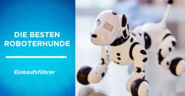 besten roboterhunde