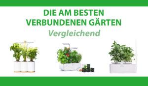 vergleichend verbundenen gärten